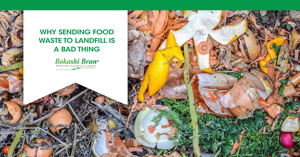 Food waste and other rubbish at landfill