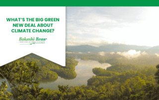 Rainforest and the big green new deal blog